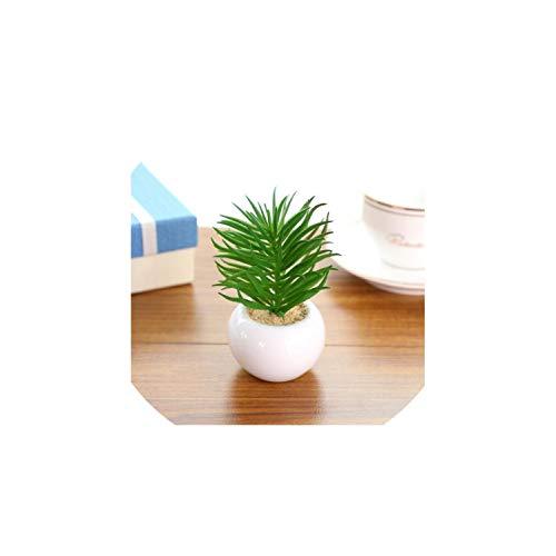 Arrangement Kaktus Deko