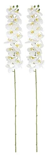 Orchideen-Zweig künstlich 2 Stück (C - extra groß 125cm)