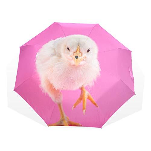 Lehrer-küken (Stilvoller kompakter regenfester winddichter Regenschirm-Sonnenschirm für Männer u. Frauen Küken-Mit-Rosa-Hintergrund)