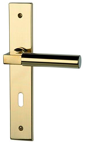 Alpertec Zimmer-Maniglia per porta Alaska Piastra lunga 20anni di garanzia Zimmer garnitur porta a leva maniglia maniglie delle porte, 1pezzi, 32974500