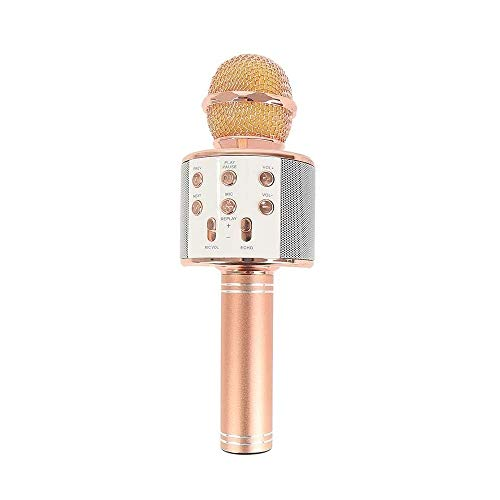 Drumstone WS878 Wireless Karaoke with Recording, FM Radio, Attach Earphones, USB Device Support