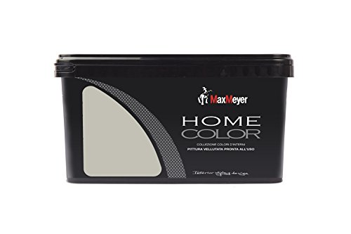MaxMeyer PP0385QB Pittura murale Home Color Silver 2,5 L