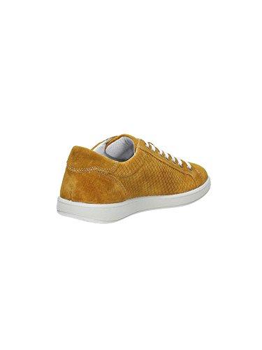 Igi & Co. 76767 Sneaker UOMO Senape