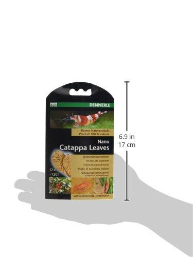 Dennerle 7004057 Nano Catappa Leaves - 4