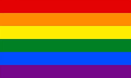 Sonia Originelli Fahne Flagge Länder Städte 90 x 150cm Fußball WM Fan Party Farbe Regenbogen