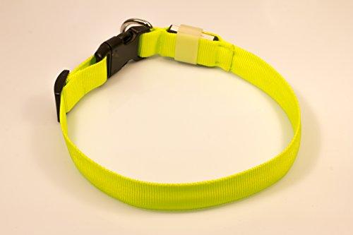 LED Leuchthalsband Basic 1 per USB aufladbar, Größe S, Grün - 6