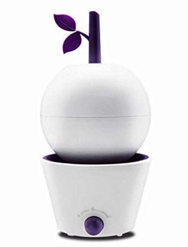 vaporisateur-dair-accueil-bureau-bureau-mute-petit-mini-cadeau-aromatherapie-c