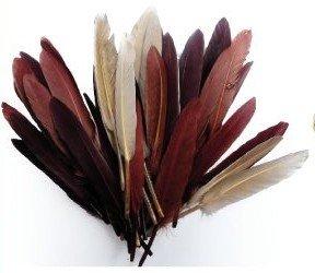 1 Beutel mit 10 g Indianer-Federn, verschiedene Brauntöne