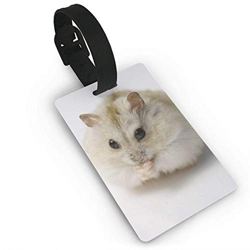(CHSUNHEY Kofferanhänger,Hamster Luggage Tags with Print for Suitcases,Flexible PVC Travel ID Sturdy Identification,Travel Accessories Suitcase Tags Apply3.7X2.2in)