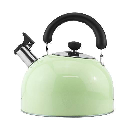 WXH Teapot Edelstahl Teekanne/Poliverner kleine Kaliber Großkaliber große Kapazität fein gemachte Filter-Familienhotel Fine Coffee oder Teapot,Green
