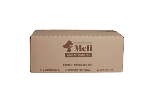 Dentro de nuestras producciones tenemos ademas de Kits de Autocultivo, alpacas. Son más grandes de los Kits, y producen muchas más floradas de alimentos. Es uno de los productos más recomendados para aquellos amantes de las setas.   Nuestras alpacas ...