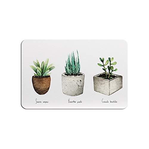 BELOVINGSHOP Estera de baño de diatomita de Lujo Antideslizante Estera Suave Absorbente,Cactus...