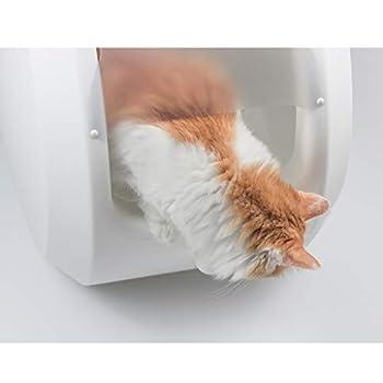 Lsrryd Boîte à litière à Bascule Ultra autonettoyante pour Chat, Couverte, Plateau à litière Loo avec Capuchon pour Chat de Petite/Moyenne Taille (Couleur : B)
