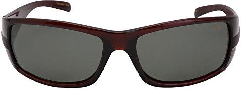 Divyang Opticals Unisex Fiber Wayfarer Sunglasses (Black, Vintage INSTINCRT C124)