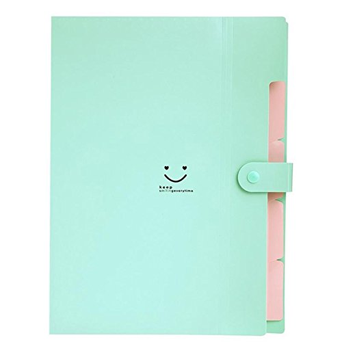 sundatebe Büro Kunststoff Ordner Multi Pocket Organizer A4Datei Erweiterung Dokument Ordner Einheitsgröße blau/grün (Datei-erweiterung Kleine)
