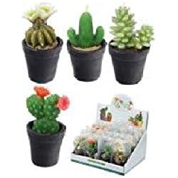 Divertido Mini velas–pequeño Cactus en una maceta