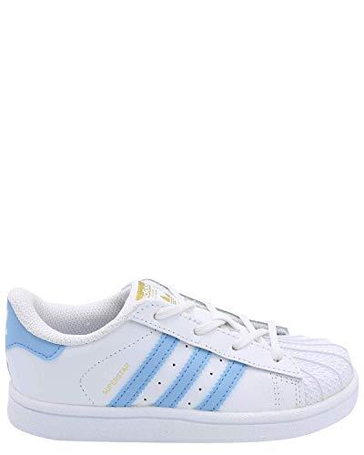 Adidas Original BW1279 : White Light Blue Superstar Toddler Sneaker (4 M US Toddler, White Light Blue Gold Metallic) (Adidas Toddler Sneaker)