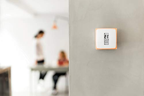 Netatmo Smart Thermostat for individual boiler