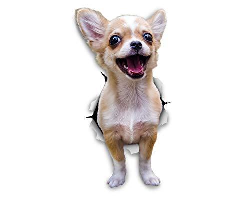 Winston & Bear Perro 3D pegatinas - Pack 2 - Chihuahua emocionado para la pared, nevera emocionado Chihuahua perro pegatinas
