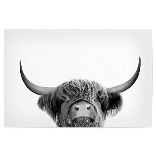 artboxONE Poster 150x100 cm Tiere Highland Cow Animal hochwertiger Design Kunstdruck - Bild Tiere von MIUUS Studio