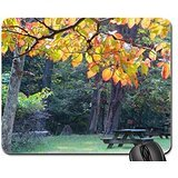 autumn-is-picnic-time-mouse-pad-mousepad