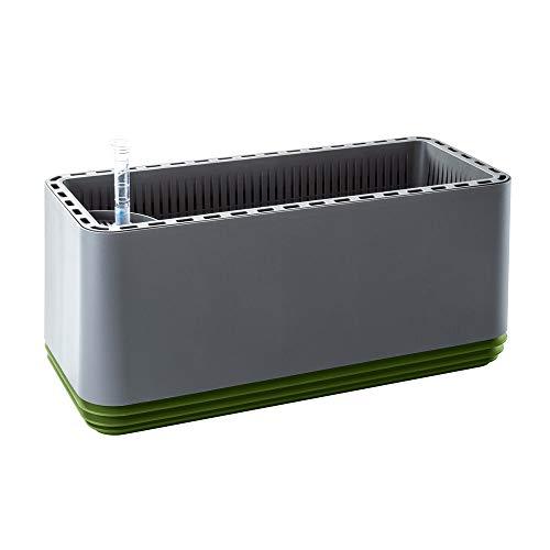 Airy Box - innovadora Maceta purificadora de Aire 100% eficaz - Purificador de Aire Natural con Plantas...