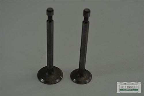 Ventil Auslassventil + Einlassventil passend Robin EY15
