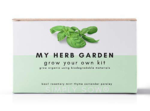 Grow Your Own Herbs Kit, Simply Sow My Herb Garden Seeds Gift Box (My Herb Garden)