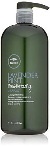 Trockenes Haar Mint Shampoo (Paul Mitchell teatree Lavender Mint Moisturizing Shampoo, 1000 ml)