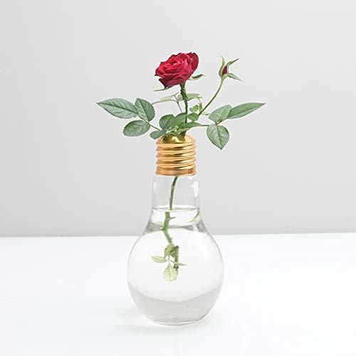 youkara Ständer Leuchtmittel Form Glas Vase Transparent Glas Vase Flower Plant Hydrokultur...