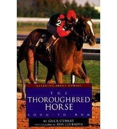 The Thoroughbred Horse: Born to Run (Learning About Horses)