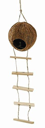 Galleria fotografica Elmato 10447casetta di cocco con scaletta