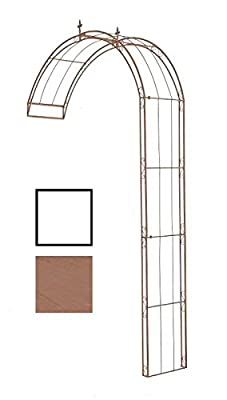 CLP halbrunder Rosenbogen PIETRO zur Wandbefestigung, aus stabilem Eisen (aus bis zu 4 Größen & 2 Farben wählen) von CLP - Du und dein Garten