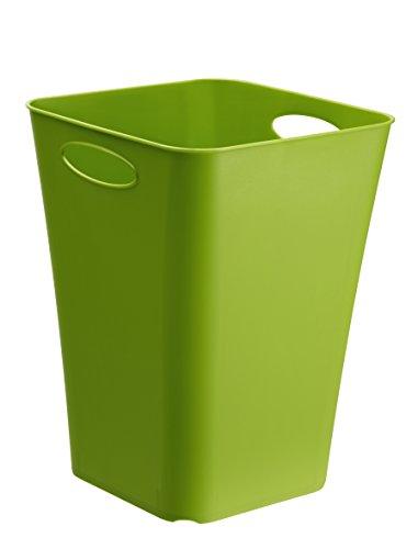 Rotho Living Aufbewahrungsbox, Kunststoff (PP), grün, 23 l (29,5 x 29,5 x 39,5 cm)