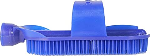 HORSE AND LIVESTOCK PRIME 111567 Plastic Curry with Hose Attachment, Blue
