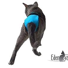 Le BEEBOP by EDENVANE Jouet pour chat ultra r/ésistant /à la cataire