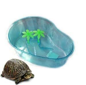 961432 vasca vaschetta tartaruga tartarughe piscina