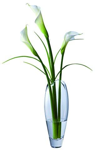 Dartington Crystal Vase Flora Haut Clair,