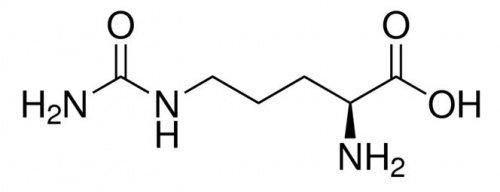 S3 Chemicals L-Citrullin (98,5-101{d0955473e1ac9b4ed20ef3cc08c5bd5347b6f892fc777faff7eeb4814715c346}, AJI, Food Grade) Gebindegröße 5kg