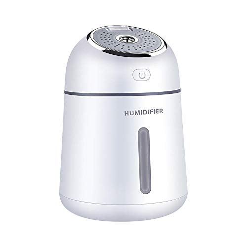 L'Miracle Home Mini USB humidificador pulverizador multifunción hidratante, humidificador de Regalo de...