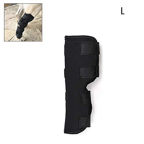 Egosy Soporte Perros Brace Leggings Conjunto Protector