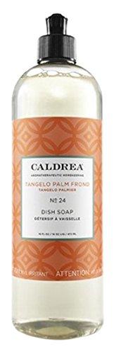 Caldrea Dish Soap Tangelo Palm Frond