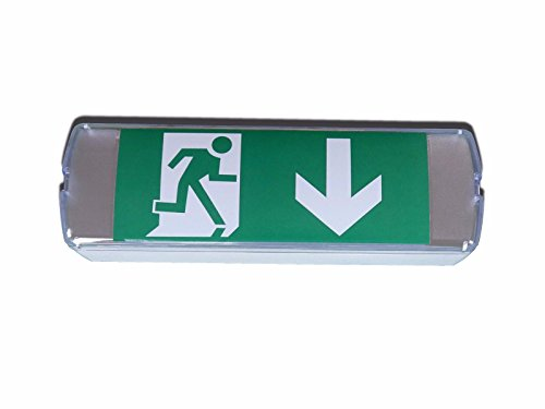 Details zu LED Notbeleuchtung Fluchtwegleuchte Notleuchte Notausgang Pfeil nach unten