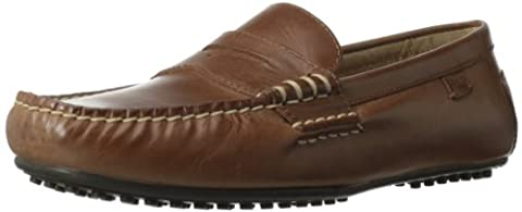Polo Ralph Lauren Men's Wes Penny Loafer,Polo/Tan,9.5 D US