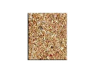 hobby-corallo-fein-sfuso-per-kg-netto-fondamentali