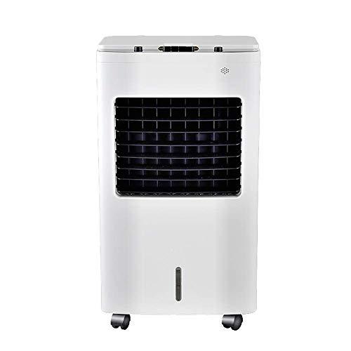 SWB Condizionatore d'Aria Domestico Freddo Singolo Freddo, Ventilatore Freddo oscillante Automatico