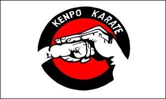 AZ FLAG Flagge Kenpo Karate 150x90cm - Karate Fahne 90 x 150 cm - flaggen Top Qualität
