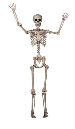 full-size-pose-n-stay-skeleton-by-pose-n-stay-skeleton