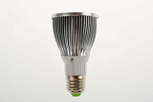 Siemens Kühlschrank Lampe Blinkt : Beleuchtung lampen tasse buyitmarketplace