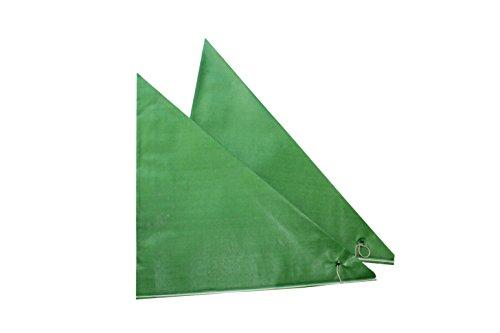 Imbiss- und Partyzubehör Spitztüten aus Papier Länge ca. 19 cm für ca. 125 g Inhalt in verschiedenen Farben (100 Stück, grün)